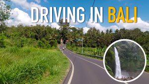 Fred Zana - Conduire à Bali